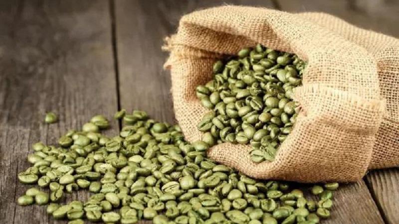 Cà phê xanh giúp ức chế cảm giác thèm ăn và kiềm chế hấp thụ tinh bột